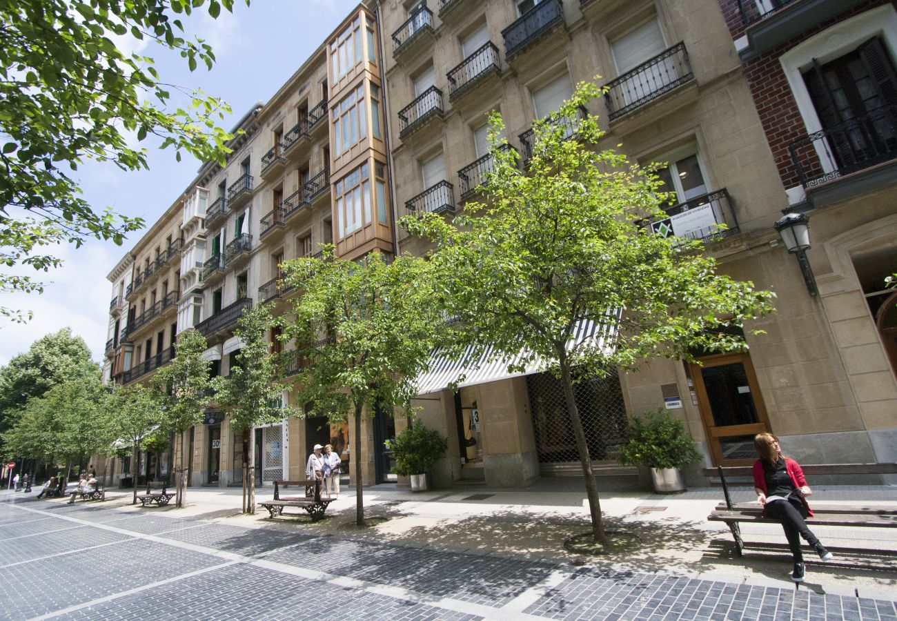 Apartment in San Sebastián - AVENIDA II